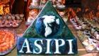 Seminario ASIPI - Cartagena de Indias 2015(7)